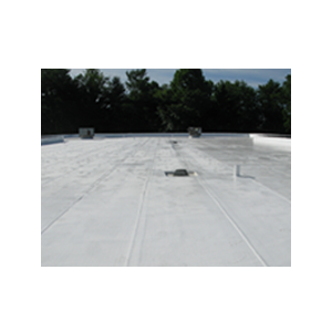 Our Roof Coating Systems