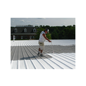 Why Restore Your Roof?